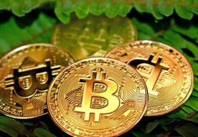 Bitcoin (BTC) is Digital Property – Michael Saylor Altcoin News