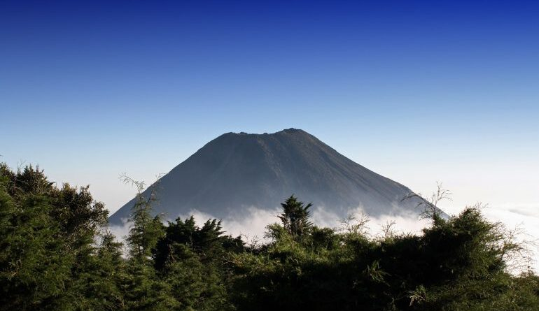 El Salvador's Bitcoin (BTC) Law to Take Effect on September 7th Altcoin News